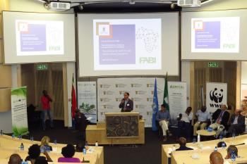 International Day of Forests celebrated at Future Africa and FABI